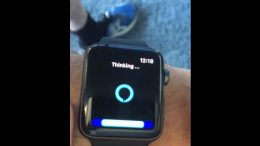 Alexa on Apple watch